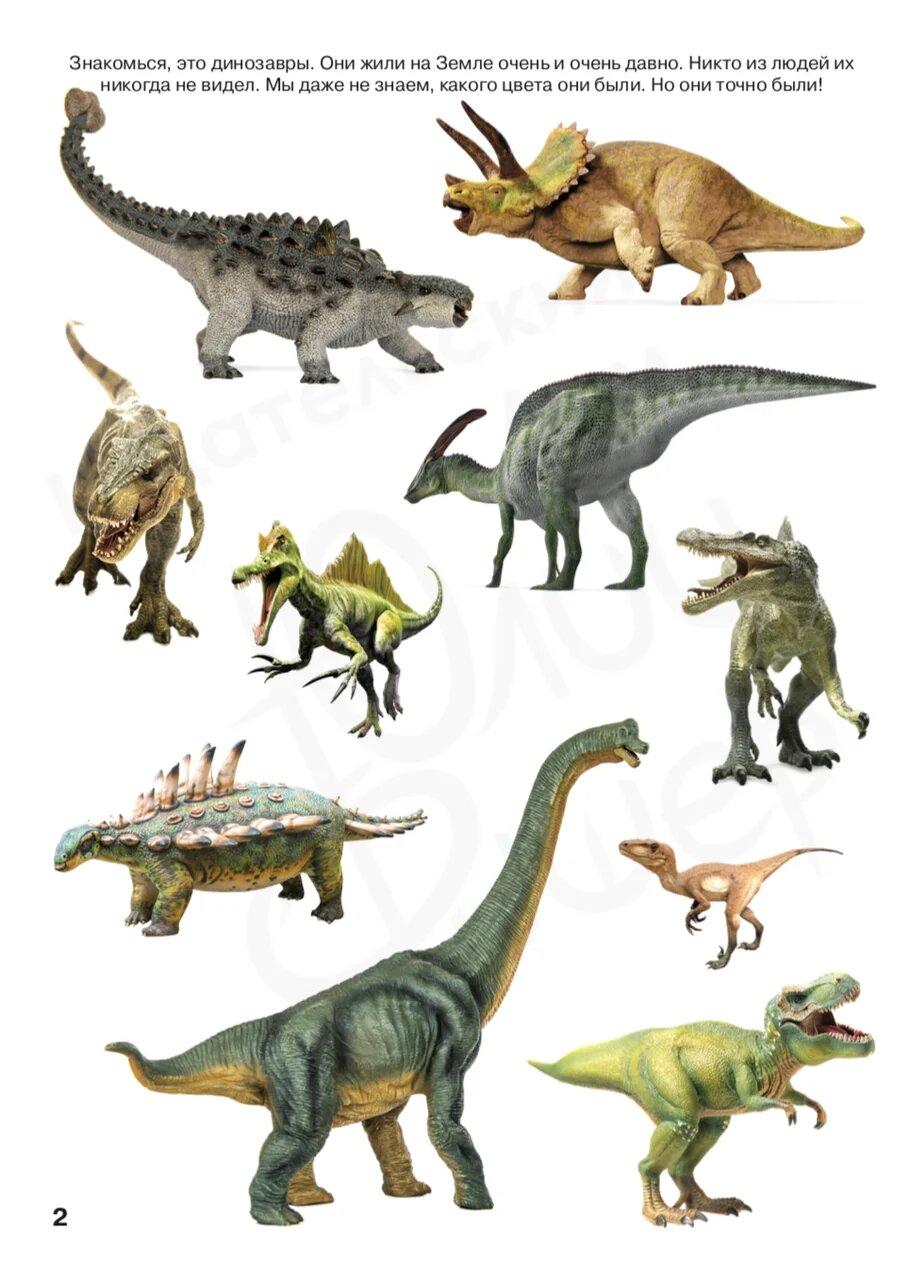 Виды динозавров в картинках, открытки